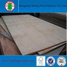 Peplar Core Panneaux de placage en placage de pin pour meubles
