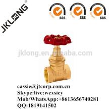 J1010 Vanne à porte en laiton