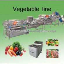 Автоматическая линия по обработке овощей / салат / IQF