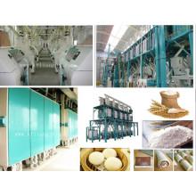 Fraiseuse à farine de blé 300t / 24h, usine de farine de blé