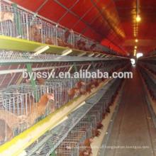Layer Egg Chicken Cage / Poultry Farm House Design Frango Volquete de aves de capoeira