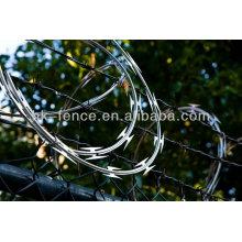 Fil barbelé de rasoir de type plat pointu avec la clôture de maillon de chaîne pour le marché de l'Afrique