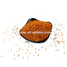 red and yellow broom corn millet for sale