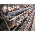 Cages de poulets à batterie pour poulet au poulet et poulets de chair