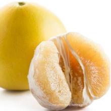 High Quality 2021 New Crop Tasty Grapefruit Shaddock Honey Pomelo