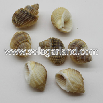 19-29MM gioielli perline Shell naturale a spirale