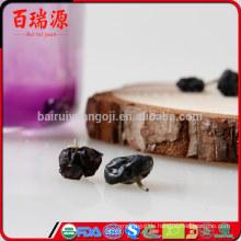 Heißes verkaufendes organisches schwarzes goji Beerenschwarz goji Beere trocknete schwarzes goji