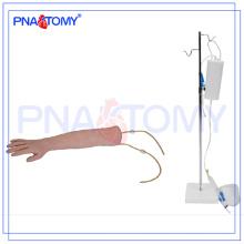 Modèle de bras d'entraînement humain IV PNT-TA001