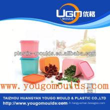 Zhejiang Taizhou Huangyan fournisseur de moules à conteneurs alimentaires et 2013 Nouvelle boîte à outils en plastique pour injection d'injection mouldyougo moule