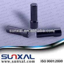 Zylindrische Seltenerd NdFeB Magnet