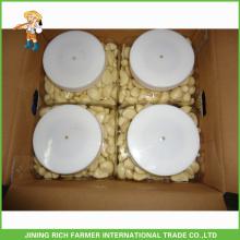 China cheap garlic/natural garlic/fresh garlic/storing peeled garlic for wholesale