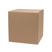 Custom Carton Packaging Box for Shipping