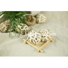 Champignon de fleur déshydraté, Chine Champignon de Shiitake