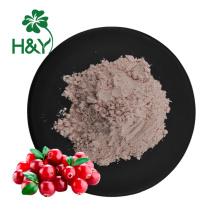 Food grade natural super fruit cranberry fruit powder