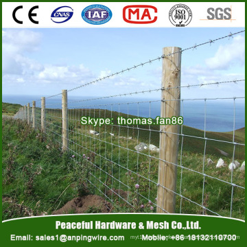 Hot Dipped Galvanized Knot Fixed Field Netting Deer Fence