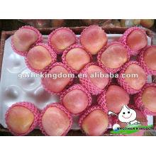 Fresh apple apple fruit para la venta