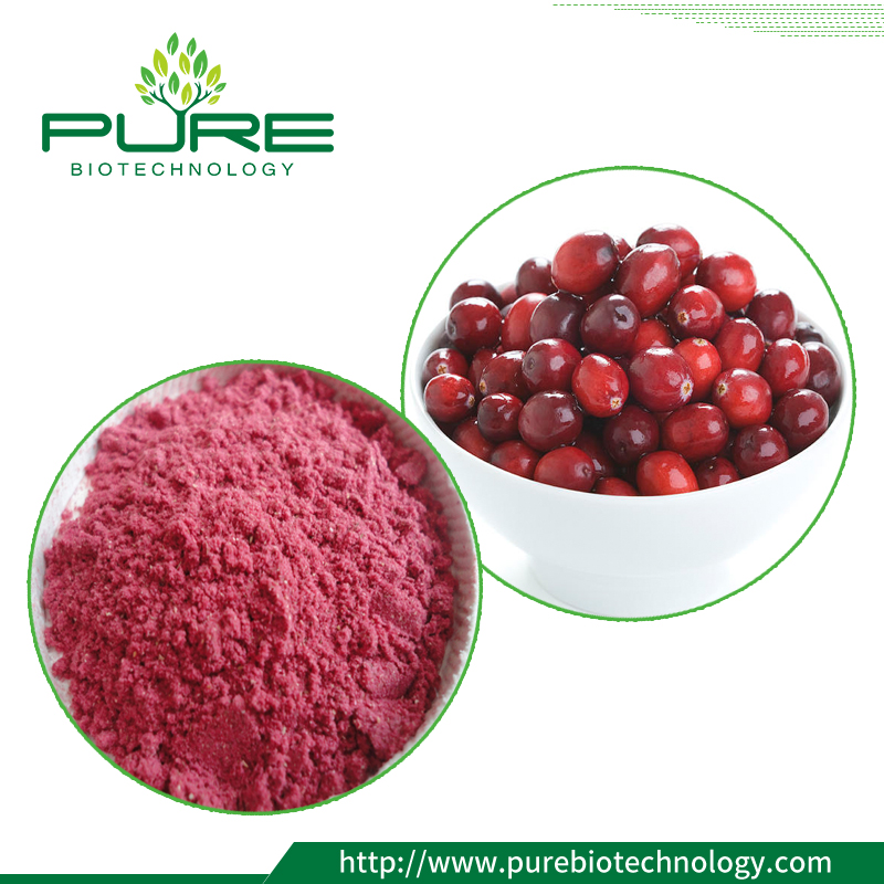 spray-dried cranberry fruit powder