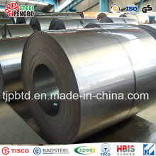 Bobina de acero galvanizada en frío JIS G3302 / En10142 / ASTM A653