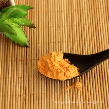 Precio barato de goji berry en polvo