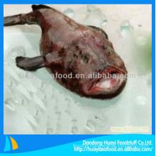 good taste frozen premium less expensive monkfish fast delivery supplier