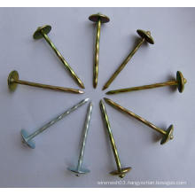 Galvanized Roofing Nail/Roofing Nails with Washer /Umbrella Roofing Nails