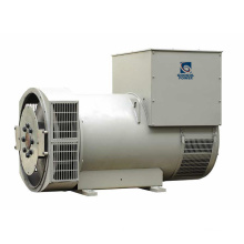 Hot Sale 400kw Googol AC Dynamo AVR Alternator