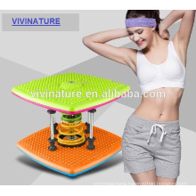 waist twisting disc exercises, waist exercise twister