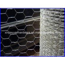 Rede de arame hexagonal galvanizada para rede Pourltry