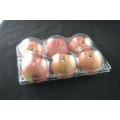 Transparent Plastic Clamshell Fruit Trays For 6000 G