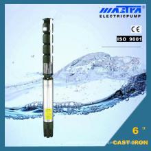 Mastra Submersible Pump 6 '' (R150-Fe-50)