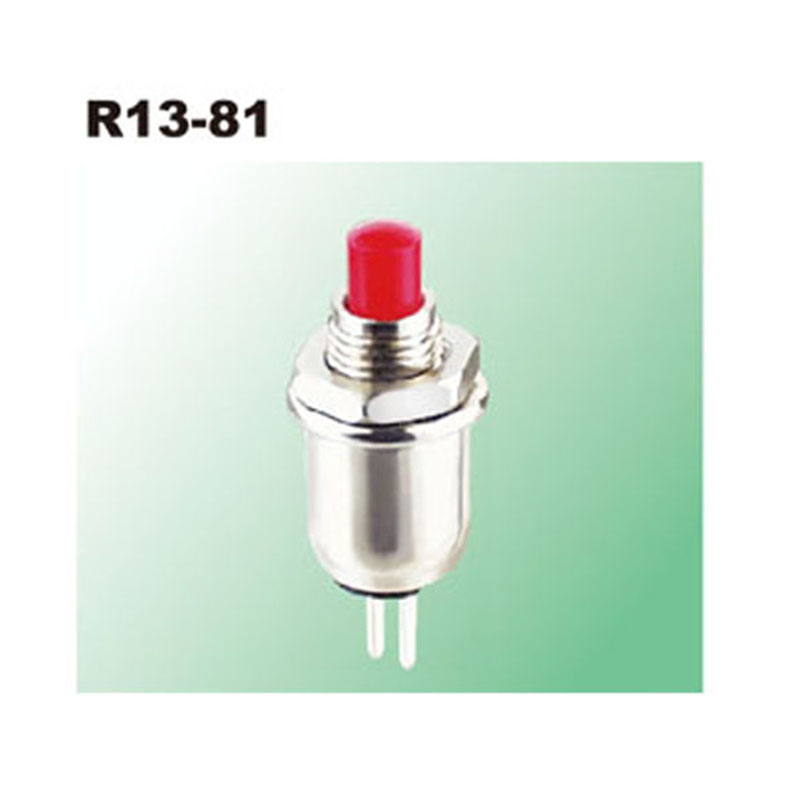 Automotive Push Button Switches