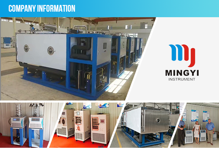 cassava freeze drying machine