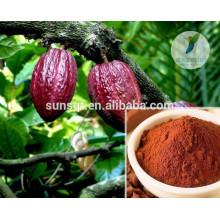 Herbes d'agrandissement du pénis sain de fèves de cacao