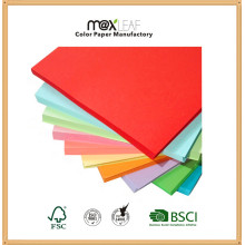 Printing Color Packaging Paper Offset Paper with Wood Pulp