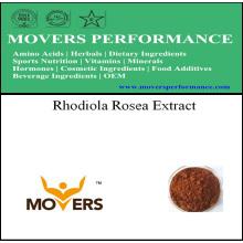 Extracto de Planta Natrual Orgánica - Extracto de Rhodiola Rosea