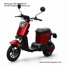 Batteria al litio rimovibile My1 da 500 W Mini E-bike da 20 Ah