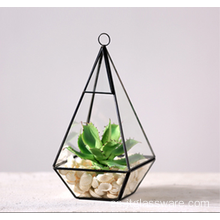 Venta al por mayor Martini vasos de vidrio Handblown Glass Terrarium