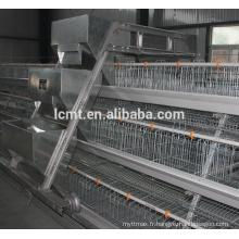 Équipement automatique d'élevage de volaille de vente chaude pour le poulet de gril et d'éleveur