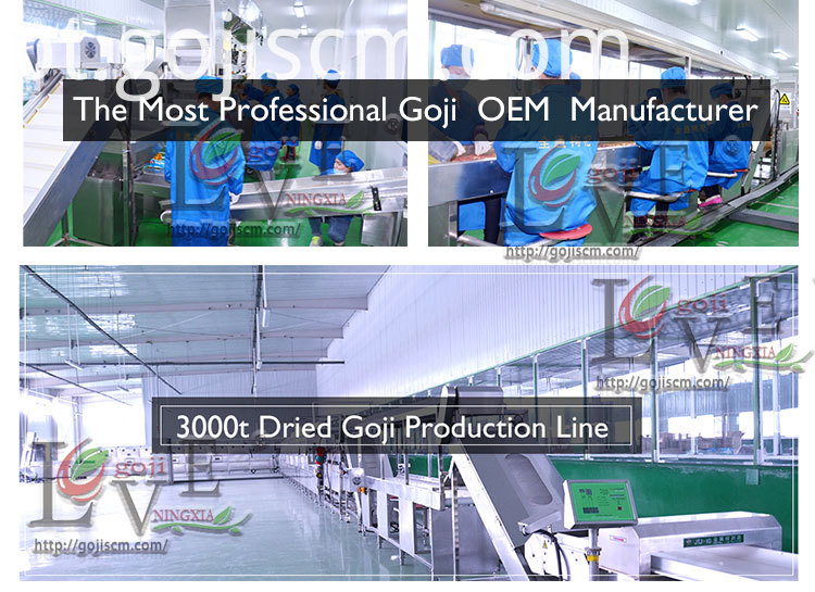 PURE NATURAL GOJI BERRY production line