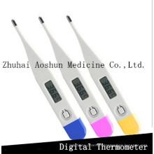 Thermomètre numérique électronique haute précision