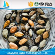 excellent and cheap shellfish frozen fresh half shell mussel meat