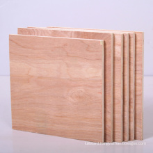 Raw / Plain Plywood of Good Quality for Indoors Usage