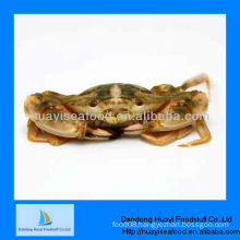 New frozen mud crab