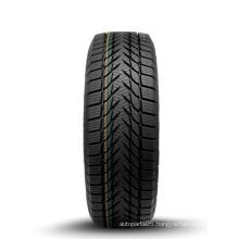 Winter Tire 225/60r16