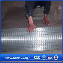 Malla de alambre soldado galvanizado para la construcción (WWM)