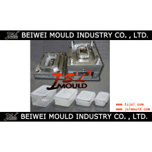 Injection Plastic Crisper Mould Manufacturer