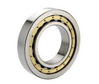 n206e-cylindrical-roller-bearing-30x62x16mm
