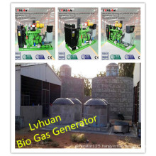 ISO Ce Gas Generator High Efficiency Bio Gas Generator Price