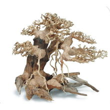 Large Aquarium Bonsai Driftwood