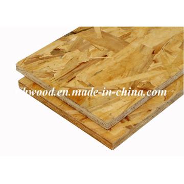 OSB ориентированные структурные Совет для мебели и крытый, Открытый строительство